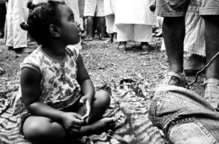 Sementes miudinhas lá no pé do juremá: A ciência ancestre da Jurema Sagrada como ferramenta educacional para as crianças de axé