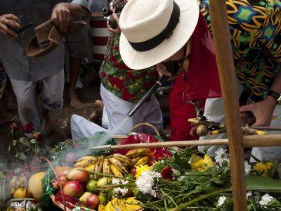 Jurema Sagrada em Alagoas. O juremeiro Alex Gomes e a Fazendinha de Zé da Pinga.