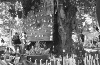 A Jurema Sagrada e a decolonização do saber